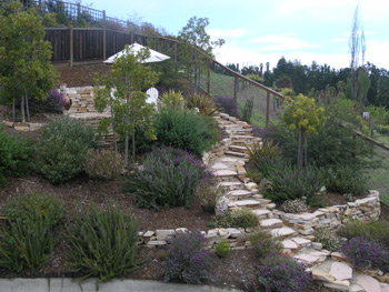 Hillsides And Slopes Present Challenges In The Garden. This Path Leads To A  Seating Area At The Top Of The Hill, Providing Breathtaking Views Of The  Moraga ...