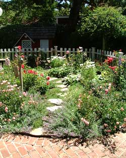 Rose Garden Design yard garden for small Here Is Another Small Area In A Home In Atherton That Succeeds As A Rose Garden Because The Area Was So Small We Included Small Shrub Roses And
